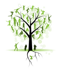 The family tree in family constellations